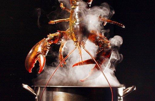 Интересное. Красиво есть не запретишь : Лобстер, он же рак, он же омар.. вкусно, лобстер, омар, рак, рецепты